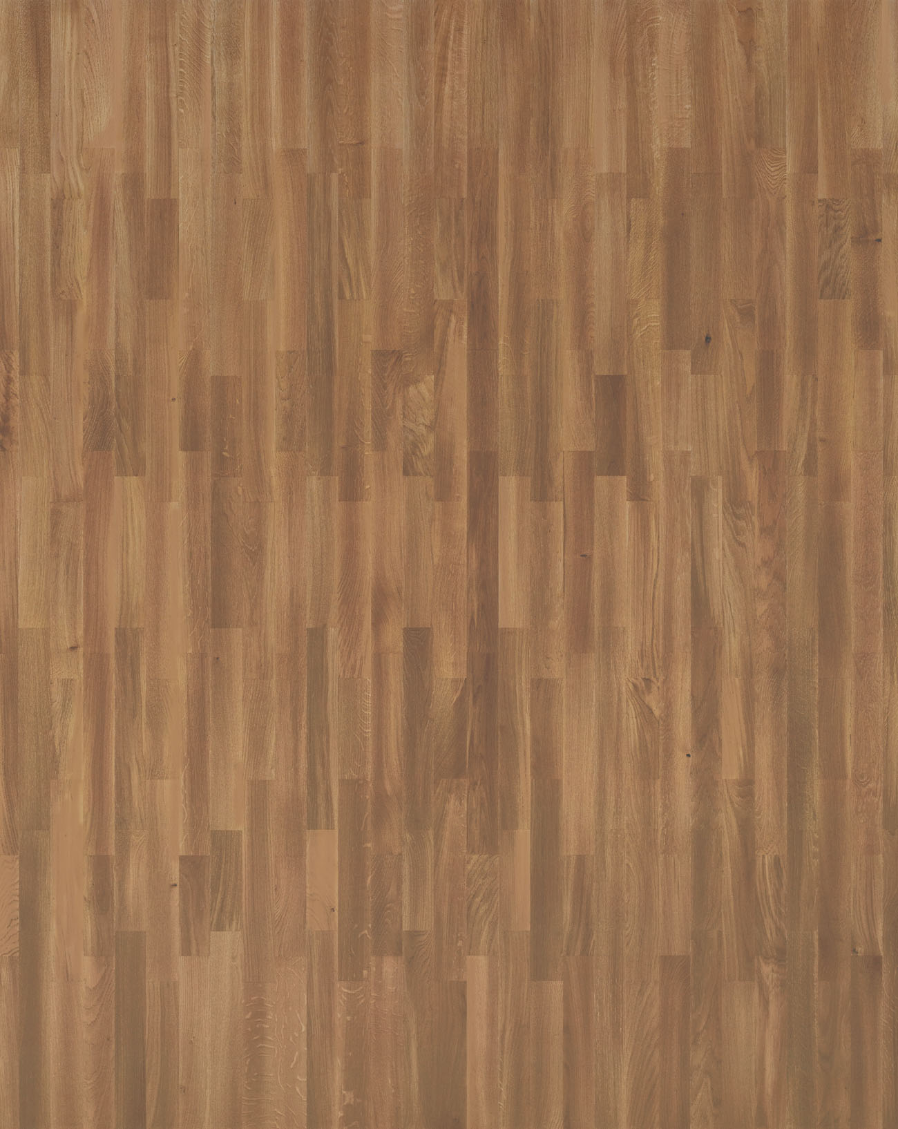 Salsa Oak Cinnamon - 550049099