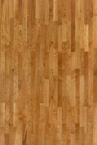 Sinteros Oak Golden - 550053043